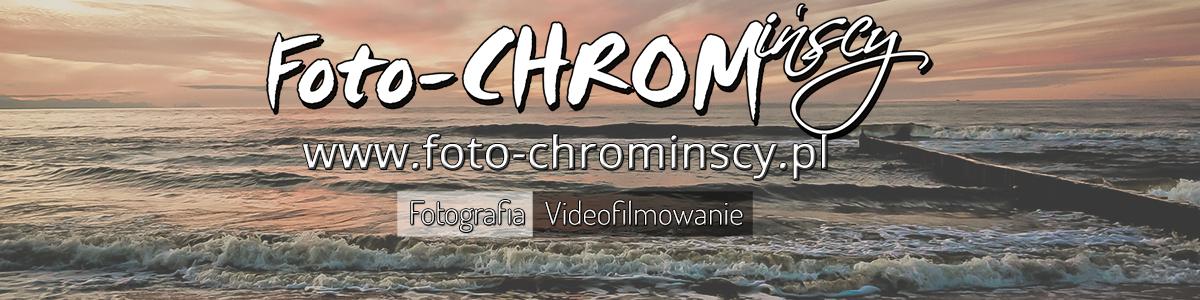 foto-chrominscy-baner-poziom2-scal